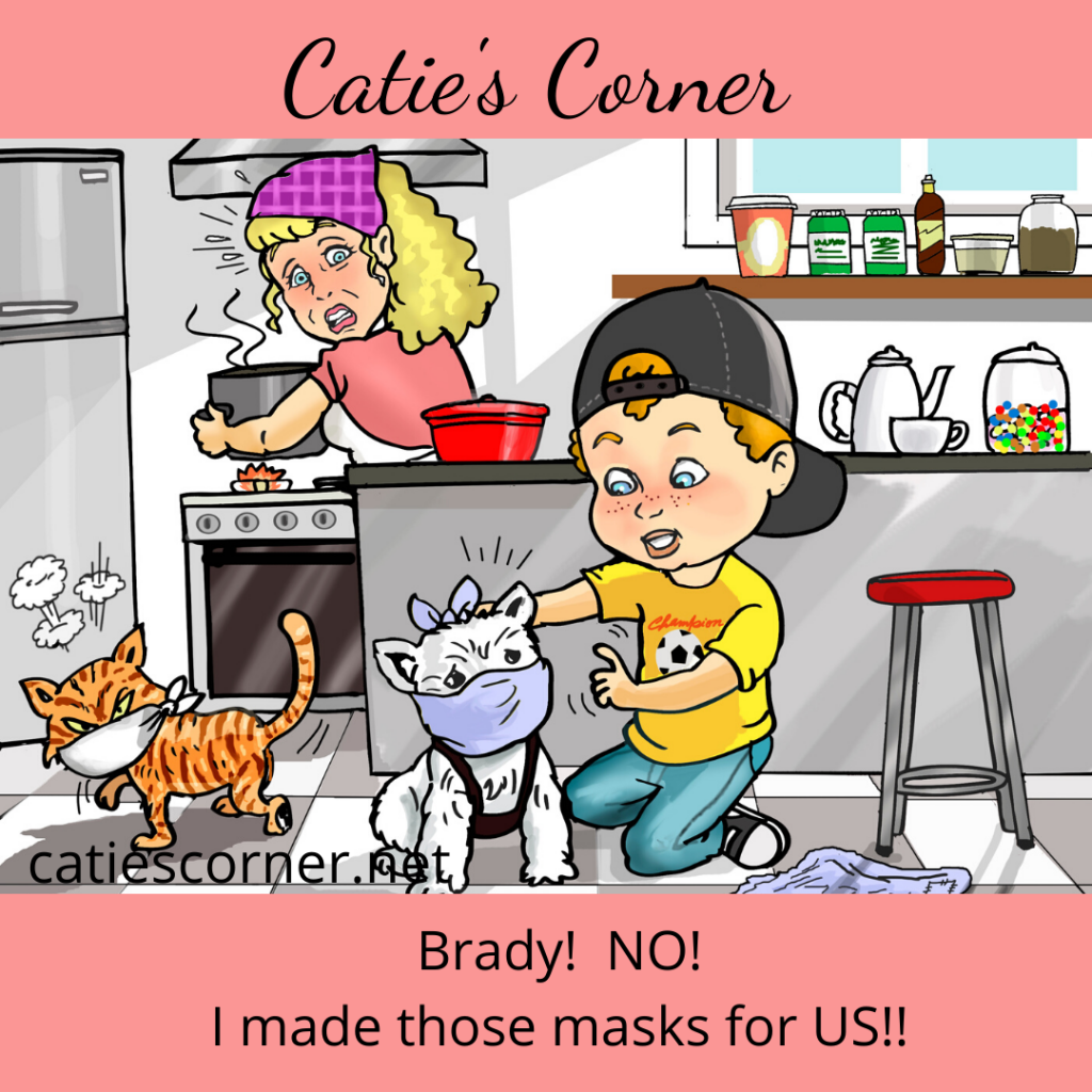 Son puts masks on pets